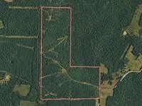 Ozark 166 Arkansas : Ash Flat : Fulton County : Arkansas