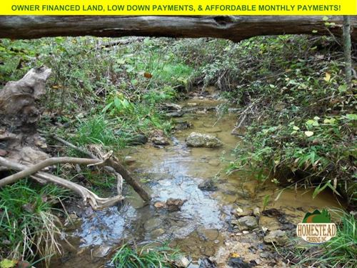 53 Acres, National Forest, & Spring : Thornfield : Ozark County : Missouri