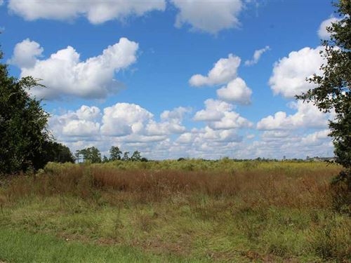1 Little Phoebe Church Rd : Folkston : Charlton County : Georgia
