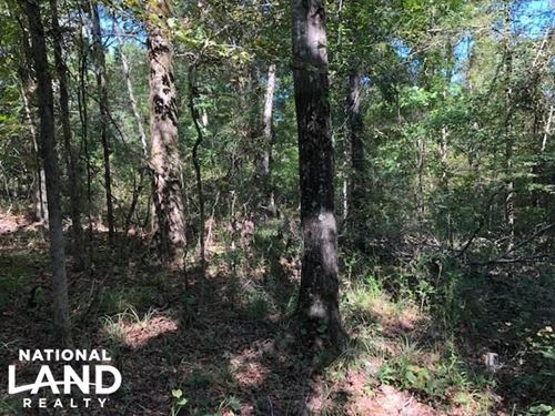 30 Acres on Scotland Rd, Near Winon : Winona : Montgomery County : Mississippi