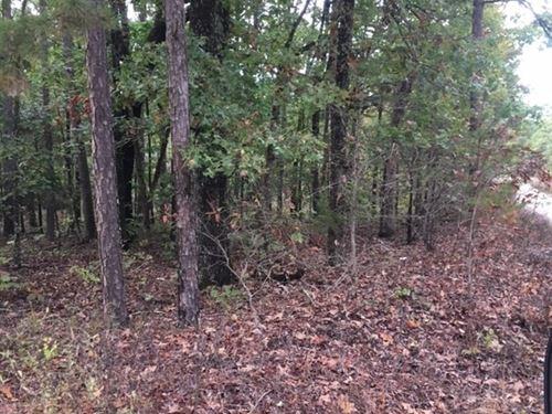 Land, Marketable Timber, Hunting : Houston : Texas County : Missouri