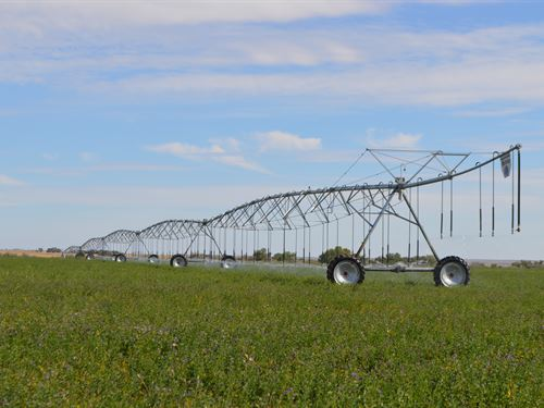Farm, Grassland & Hunting Propery : Las Animas : Bent County : Colorado