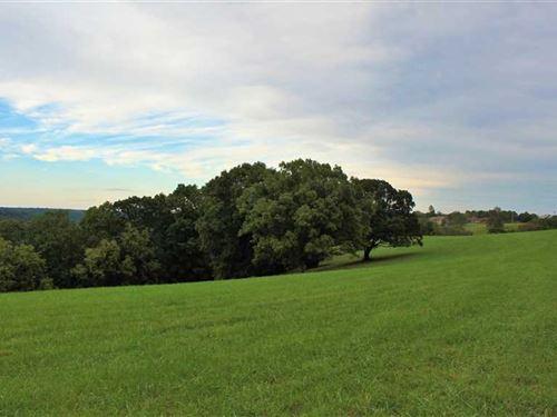 Development/Build Property on Hwy : Walnut Shade : Taney County : Missouri