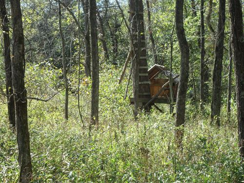 26 Acres Hunting Property, Lake : Gravois Mills : Morgan County : Missouri
