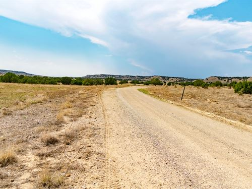 Ranch With Road Frontage : Trinidad : Las Animas County : Colorado