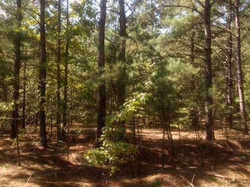 476 Hickory Dale Lane / Beautiful : Sanford : Harnett County : North Carolina