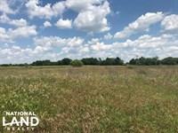 14 Acres Kaufman County, Mabank Isd : Mabank : Kaufman County : Texas
