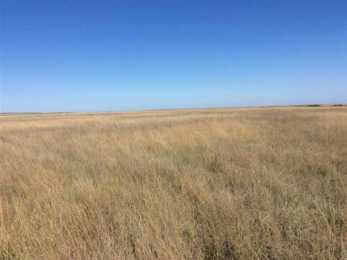 Absolute Land Auction, Cheyenne : Cheyenne Wells : Cheyenne County : Colorado