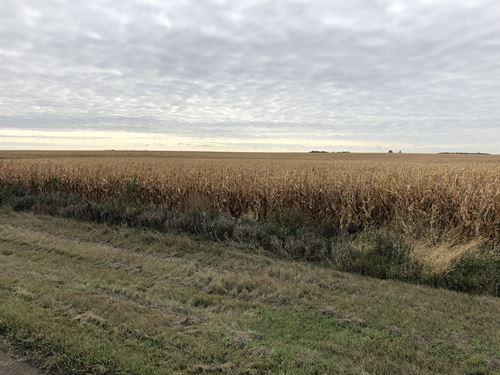 Brown County Farm Land, 564 Acres : Aberdeen : Brown County : South Dakota