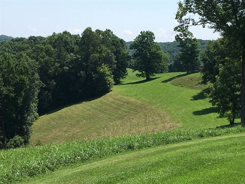 Beautiful Farm For Sale : McKee : Jackson County : Kentucky