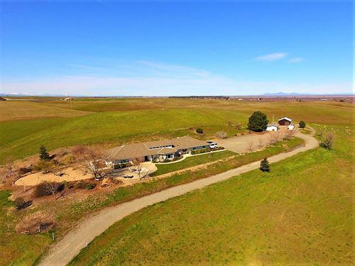 Yolo County Country Homes Acreage : Zamora : Yolo County : California