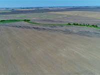 160 Acres Farm Land in Brown Co, SD : Stratford : Brown County : South Dakota