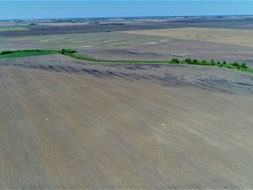 160 Acres Farm Land in Brown Co, SD : Stratford : Brown County : South Dakota