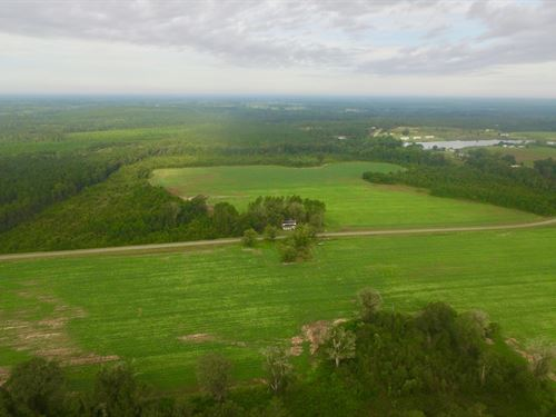 170 Acre Plantation With Home : Alma : Bacon County : Georgia