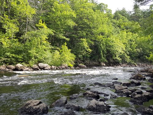 Morrill Hill Forest : Henniker : Merrimack County : New Hampshire