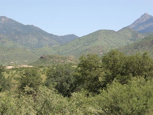 Arizona's Salero Ranch : Tubac : Santa Cruz County : Arizona