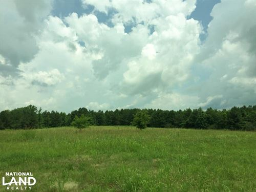 Ledbetter Road Homesite, Cattle, OR : Russellville : Franklin County : Alabama