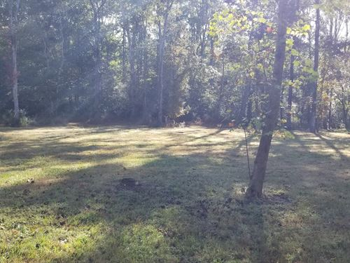 85+/-Acres Hunting Property : Dunlap : Bledsoe County : Tennessee