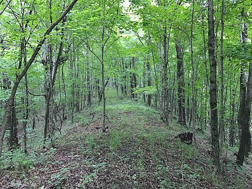 Chappelear Rd, 72 Acres : Malta : Morgan County : Ohio