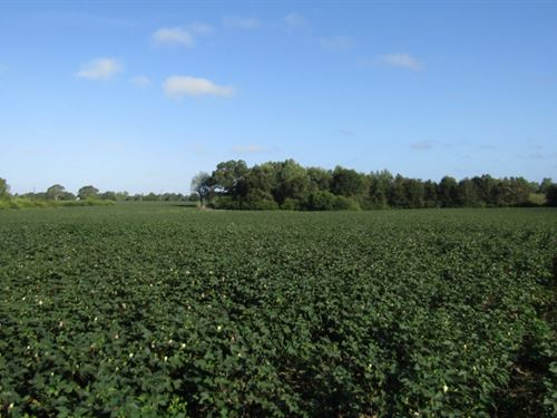 55 Acres In Pearl River County In : Lumberton : Pearl River County : Mississippi