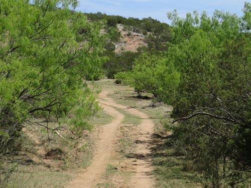 Hunting Land, Elect & Water Avail : Robert Lee : Coke County : Texas