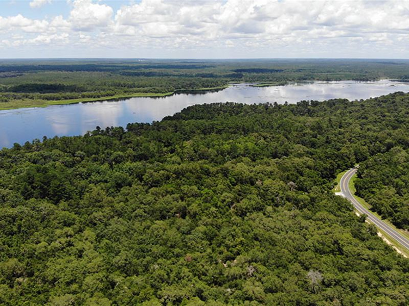 Ocklawaha River Preserve : Fort Mc Coy : Marion County : Florida
