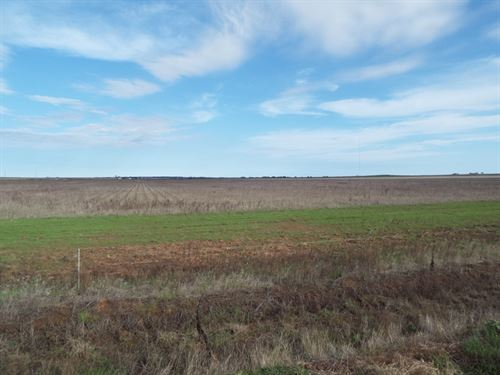 Absolute Land Auction 160 Acres : Grandfield : Oklahoma County : Oklahoma