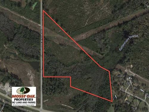 23 Acres of Hunting Land For Sale : Northwest : Brunswick County : North Carolina