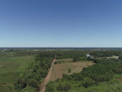 Bayou Pierre Tract, Natchitoches : Natchitoches : Louisiana