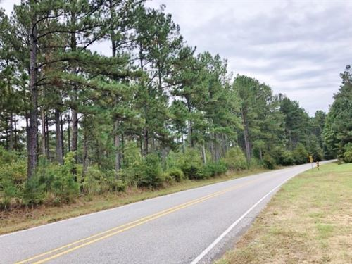 38 Acres Mature Timberland For : Brookhaven : Franklin County : Mississippi