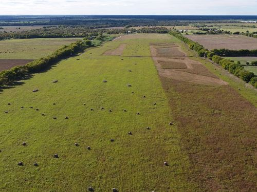 Prime Farming And Hunting Ranch : Rockdale : Milam County : Texas