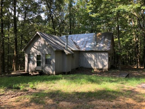 10 Acres With A Cabin In Carroll CO : McCarley : Carroll County : Mississippi