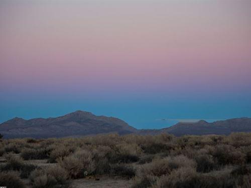 10 Ac Desert Paradise : Kramer Junction : San Bernardino County : California