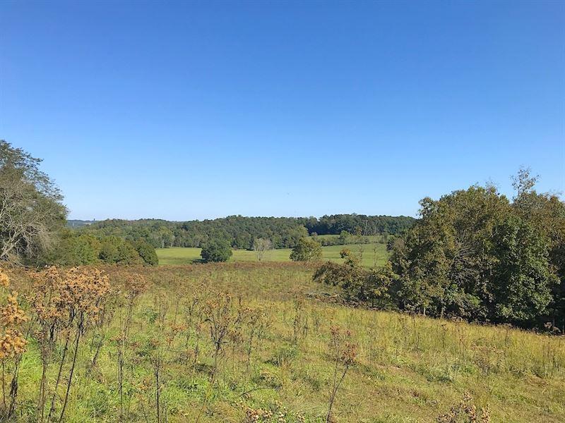 Four Mile Rd, 29 Acres : Jackson : Jackson County : Ohio