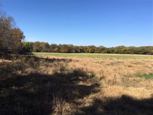 66 Acres of Hunting/Income Prop : Herington : Dickinson County : Kansas