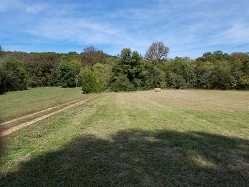 Vacant Land Fields Timberland Creek : Linden : Perry County : Tennessee