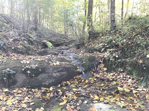 Timber Rock Rd, 21 Acres : Cambridge : Guernsey County : Ohio