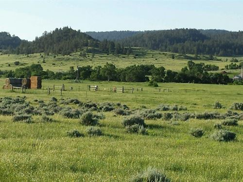 Custer Gallatin Ranch : Ashland : Powder River County : Montana