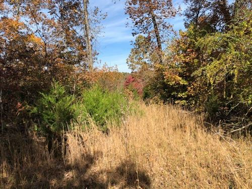 Vacant Land For Sale in Arkansas : Mammoth Spring : Fulton County : Arkansas