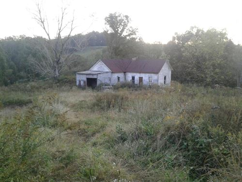 Old Home Site on 30 Acres, Private : Gandeeville : Roane County : West Virginia
