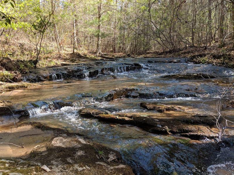 Creek Front, Asheville Nc, 10 Ac : Asheville : Buncombe County : North Carolina