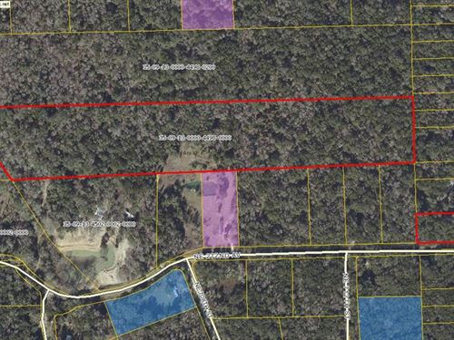 21.84 Acres 776523 : Old Town : Dixie County : Florida