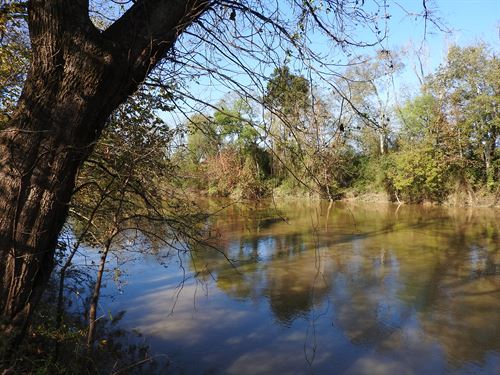 55.6 +/- Acres On Oostanaula River : Calhoun : Gordon County : Georgia