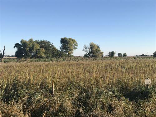 Cropland, Crp & Hunting : Spencer : Clay County : Iowa