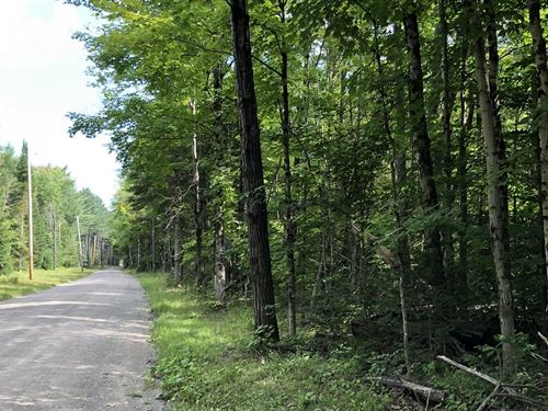 Southern Adirondack Forestlands : Russia : Herkimer County : New York