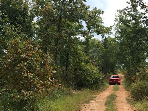 10 Acre Hunting Dream : Eminence : Shannon County : Missouri