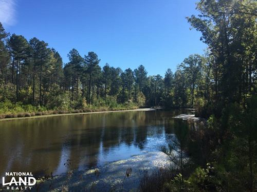 Turn-Key Hunting Land With Ponds : Blackstock : Fairfield County : South Carolina