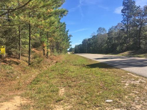Russell Road Tract : Citronelle : Mobile County : Alabama