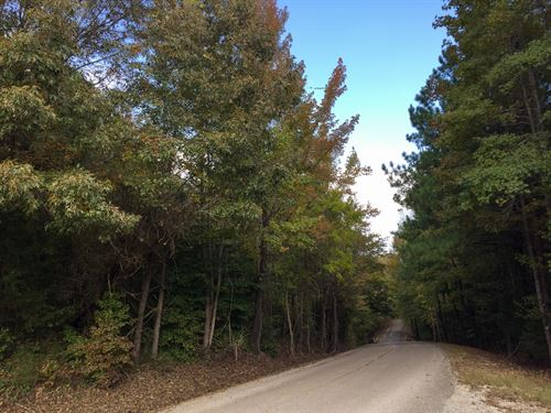 Tract 1591, Sealed Bid Land Sale : Adamsville : McNairy County : Tennessee
