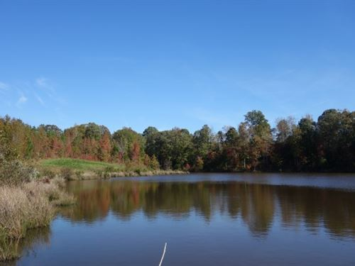 Awesome Recreational Tract & Pond : Lancaster : South Carolina